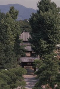 夏・学校門・杏壇門・孔子廟写真