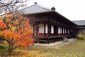 秋の正庁写真