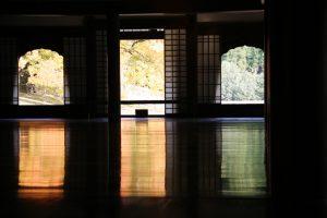 講堂から紅葉のカイノキ写真